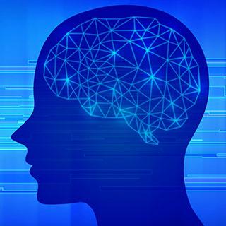 脳が働く・止まるの仕組み
